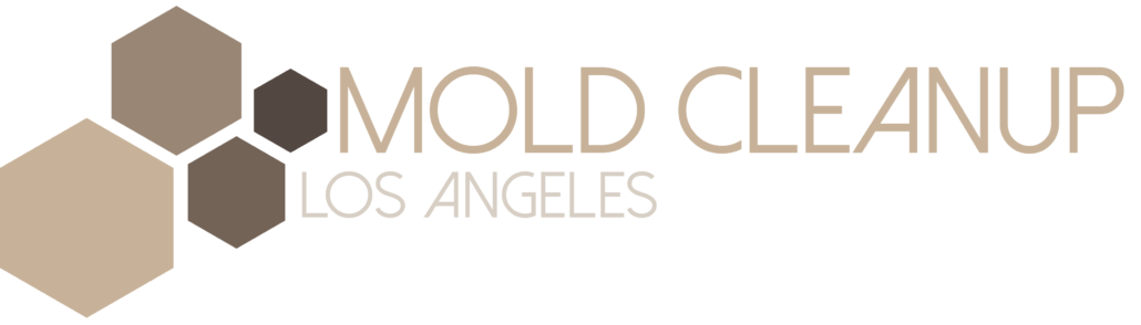 Mold Cleanup Los Angeles